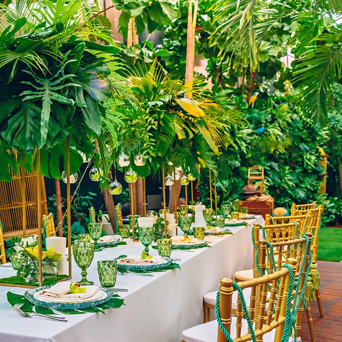 Served table at a tropical party decorated with orchids
