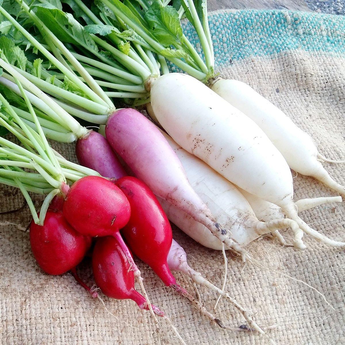 10 Radish Health Benefits You Need to Know