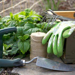 10 Gardening Tools Worth Splurging On