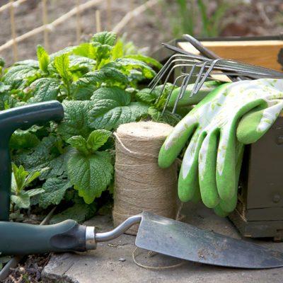 Gardening Tools ; Shutterstock ID 272366879; Job (TFH, TOH, RD, BNB, CWM, CM): Taste of Home
