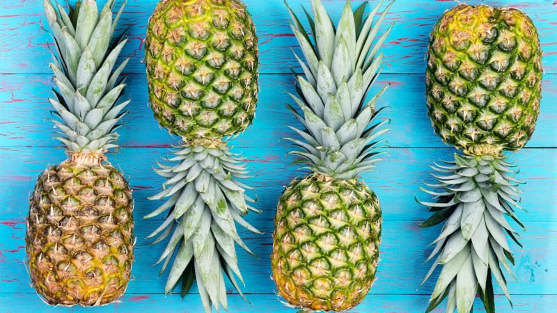 Four pineapple fruits arranged alternating next to each other on old blue crackled wooden market table; Shutterstock ID 549536092; Job (TFH, TOH, RD, BNB, CWM, CM): TOH