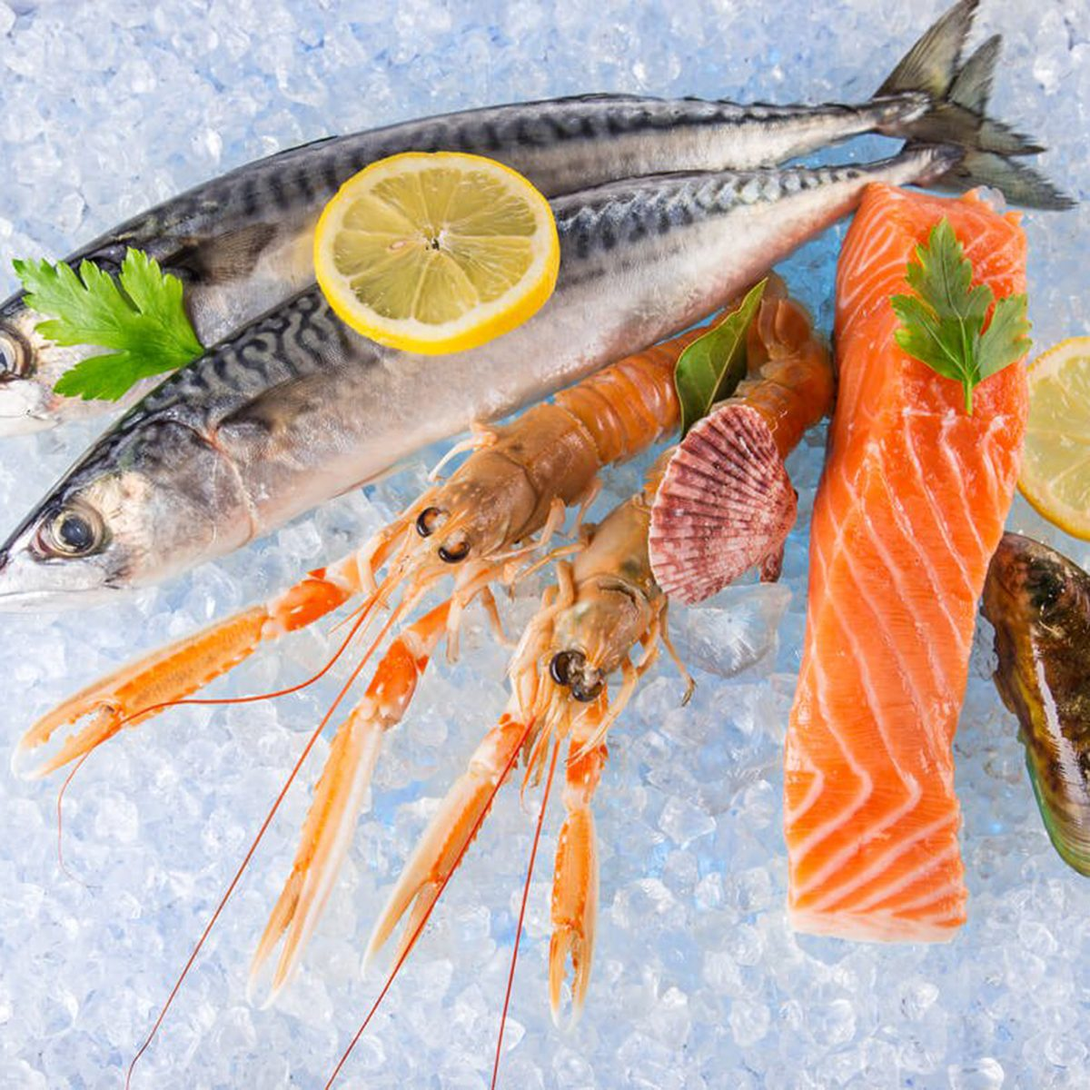 Fish and shrimp on ice