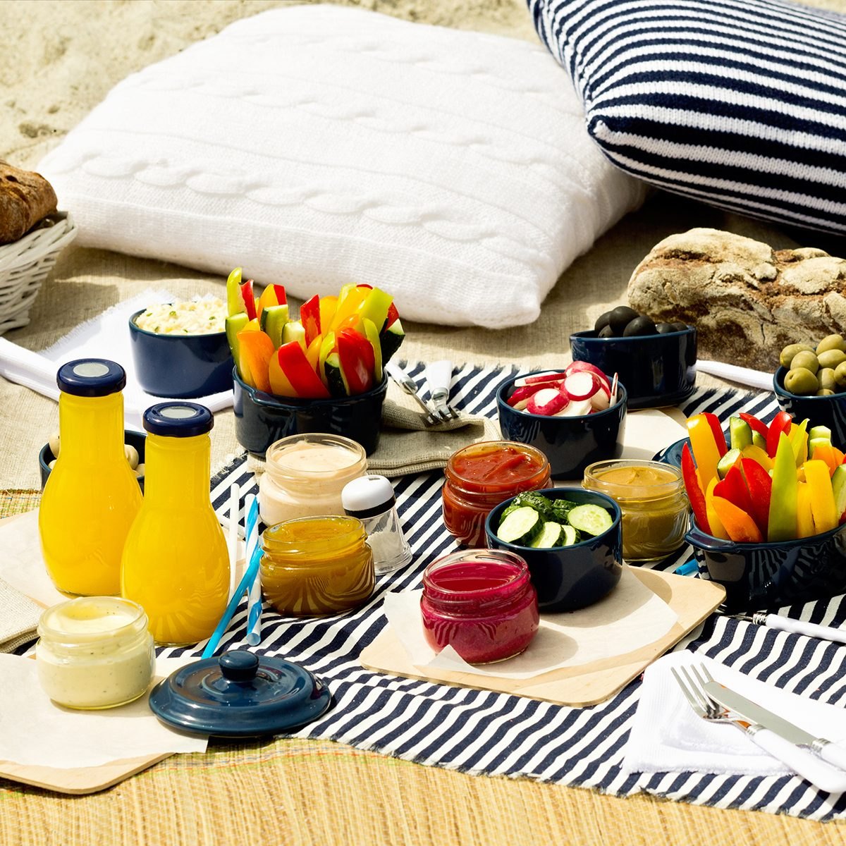 Summer picnic on the beach. Serving picnic utensils blue with vegetables and sauces on striped tablecloths and knitted pillow.