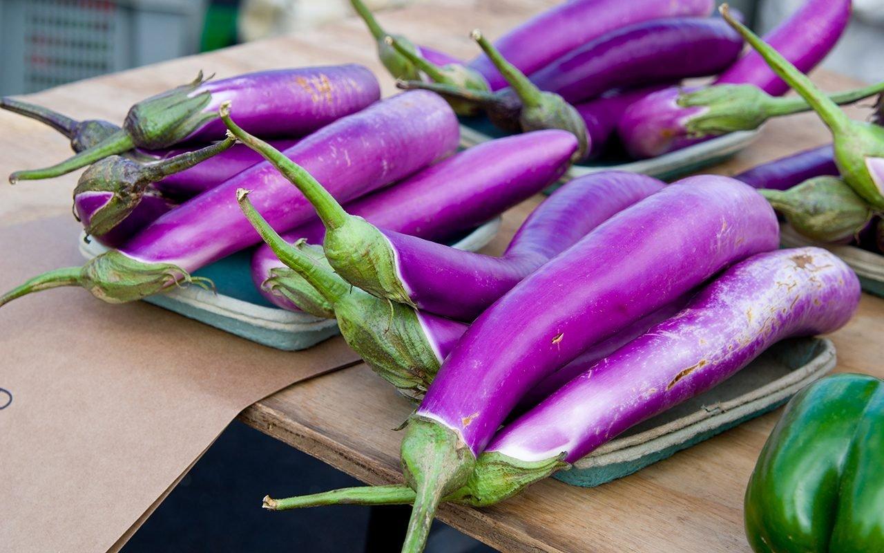 Grilled Japanese Eggplant Recipe Taste Of Home,Fried Dumplings Drawing