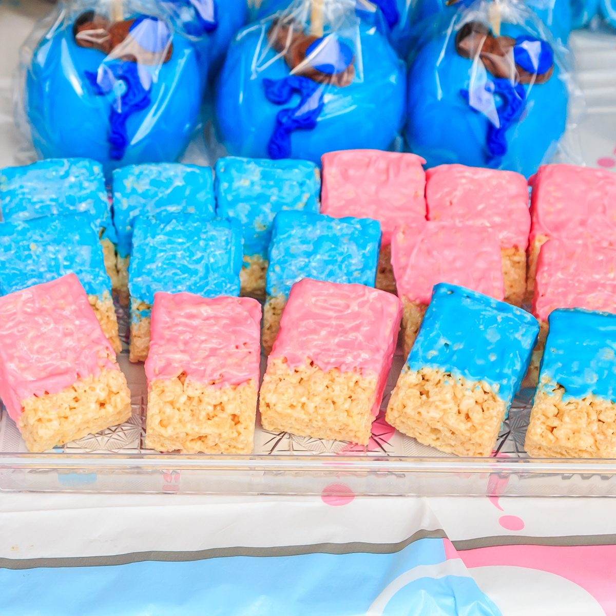 Pink and Blue, Outdoor Gender Reveal Party Decorations