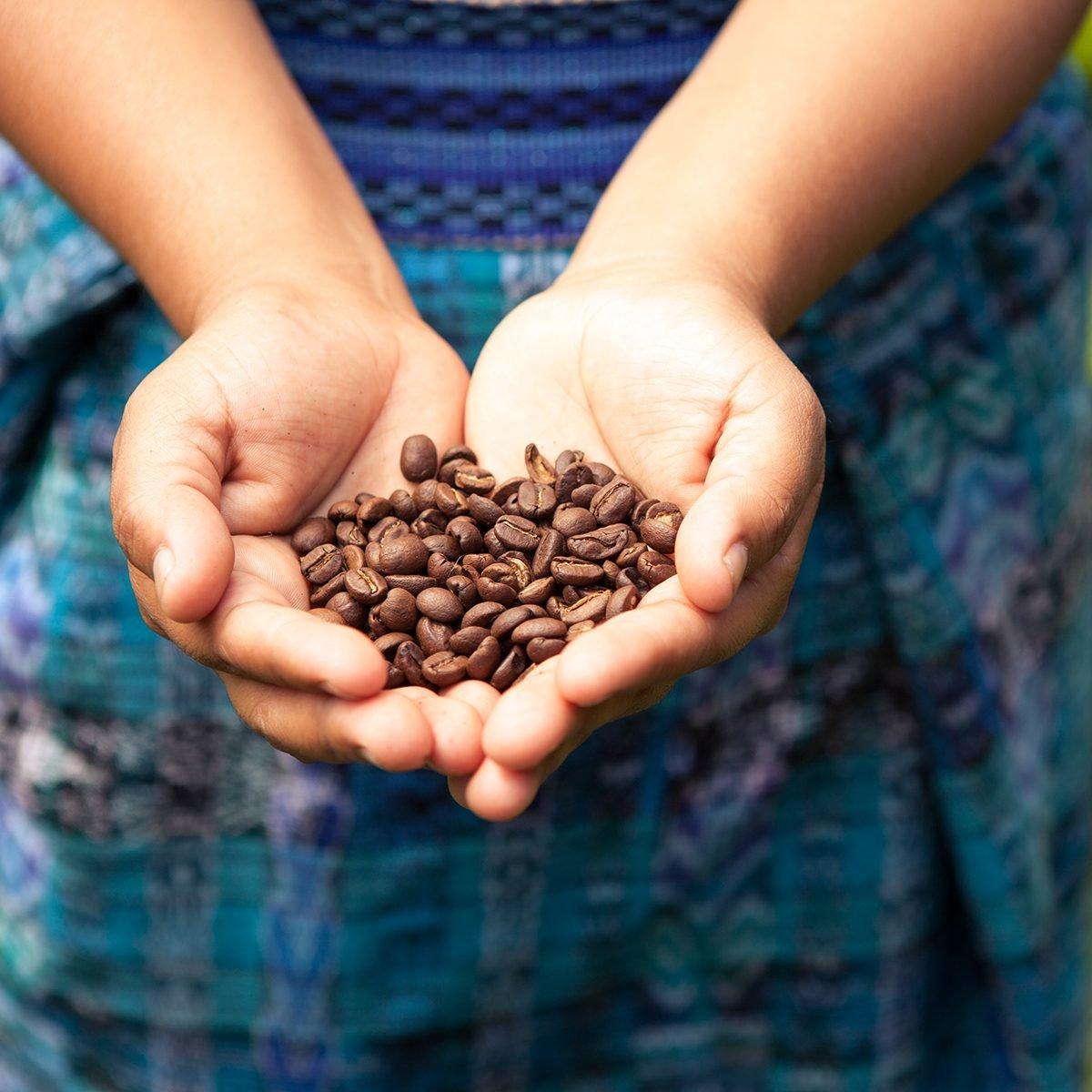 Handful of fresh organic coffee beans.