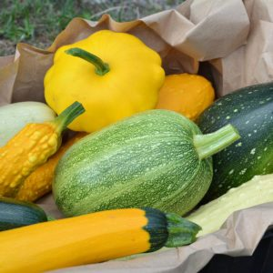 8 Types of Summer Squash (and How to Cook Each One)