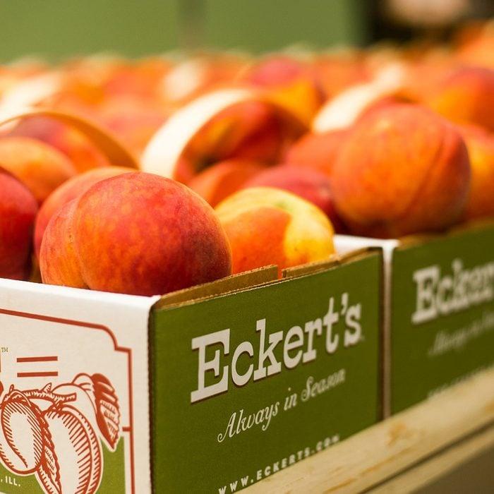 Eckert's Orchard