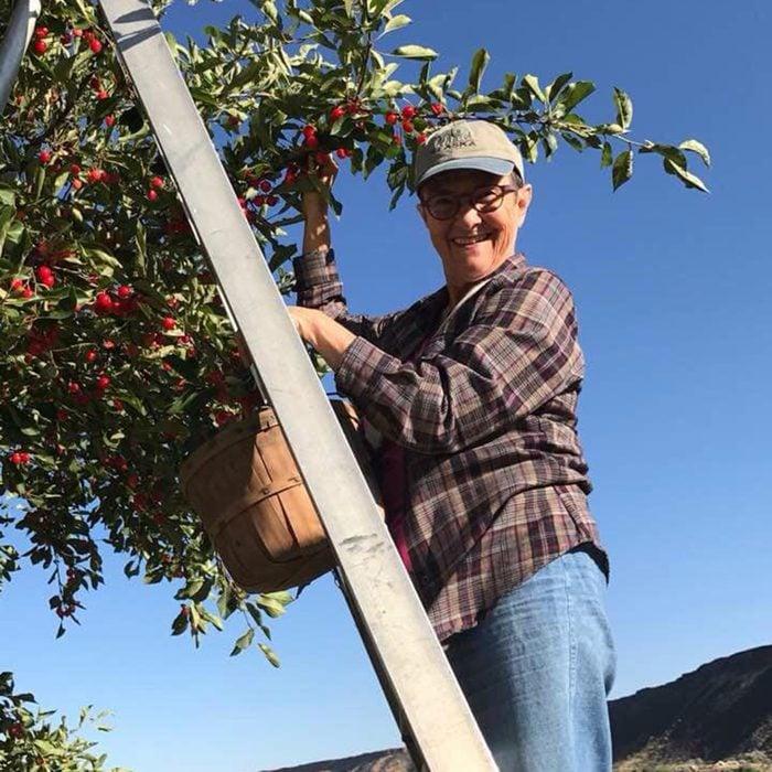 Kelley's Canyon Orchard