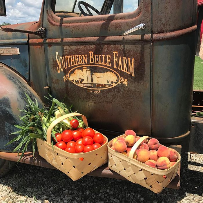 Southern Belle Farm
