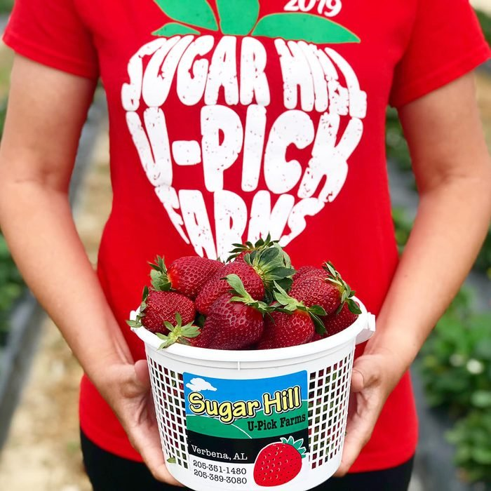 Sugar Hill U-Pick Farms
