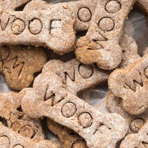 Salmonella-Infected Dog Treats Are Recalled and 27 States Have Been Affected So Far