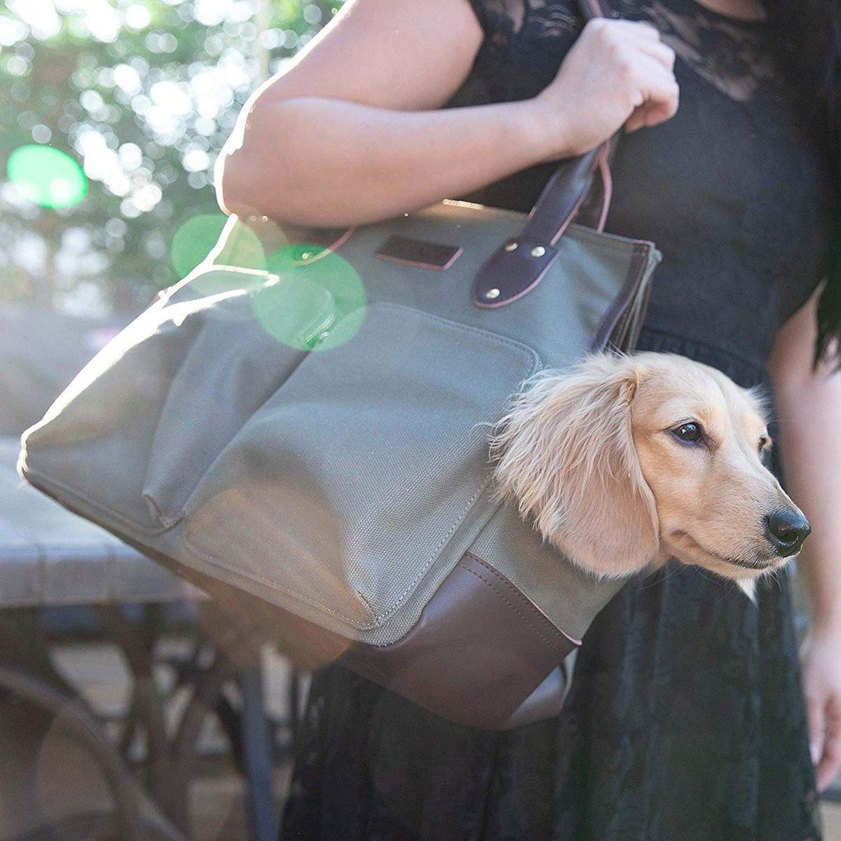 DJANGO Dog Carry Bag