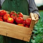 What Does Organic Mean, Anyway?