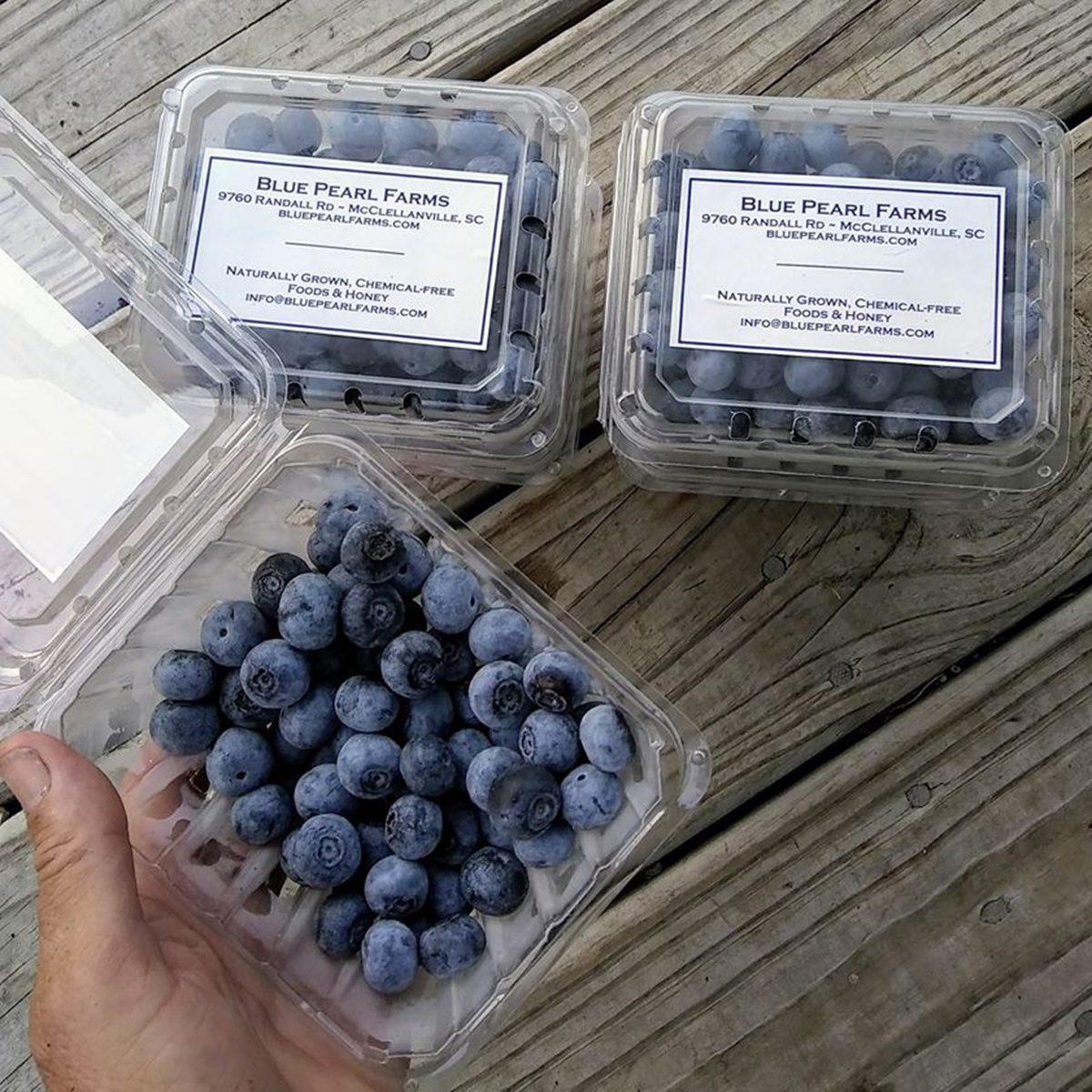 Packages of blueberries