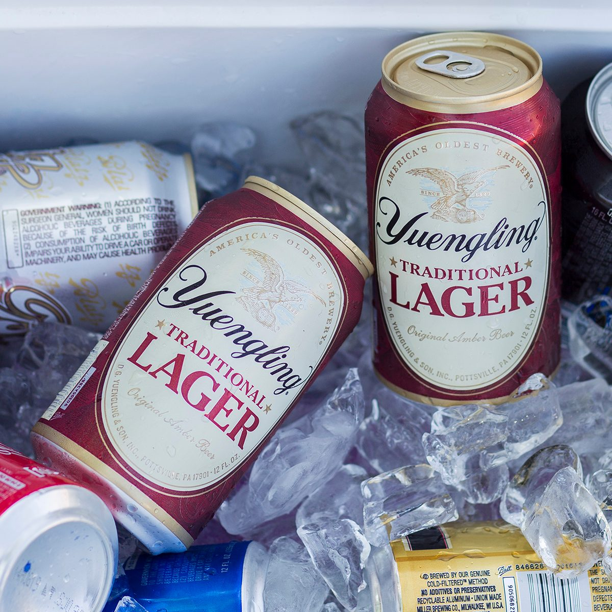 Yeungling beer in a cooler