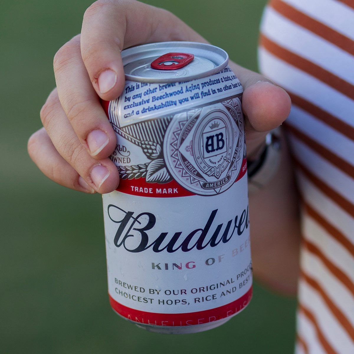 Can of Budweiser beer