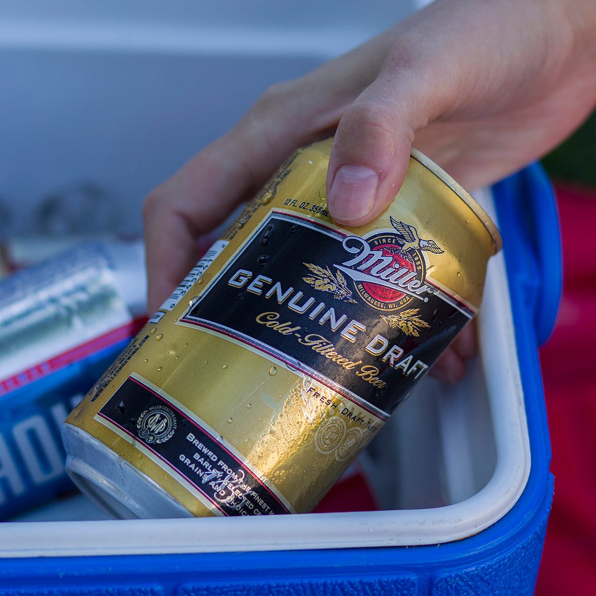 Can of Miller Genuine Draft beer in a cooler