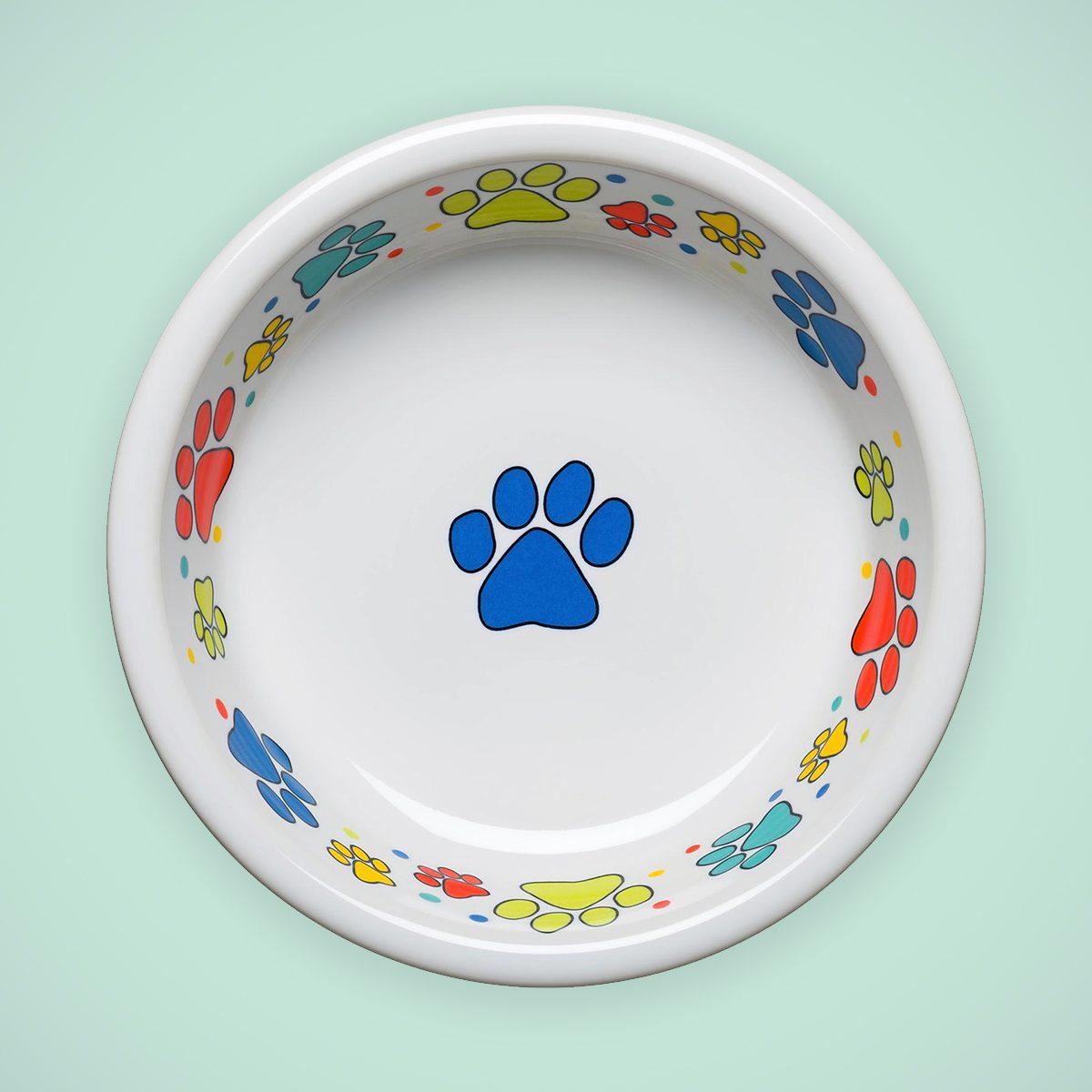 fiesta dog bowl