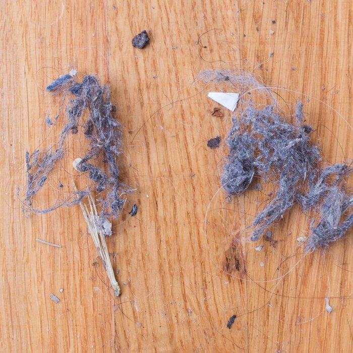 Dust bunnies on wooden floors