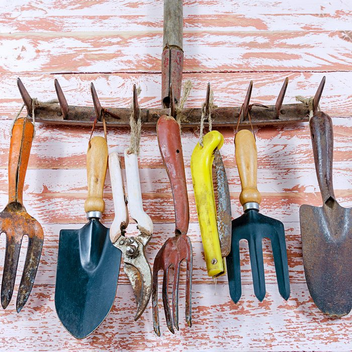 A set of rusty old garden tools rake, scissors, shovel, saw, pruners, hole adapted to hang on the rake teeth on a wooden Board brown close-up indoors.