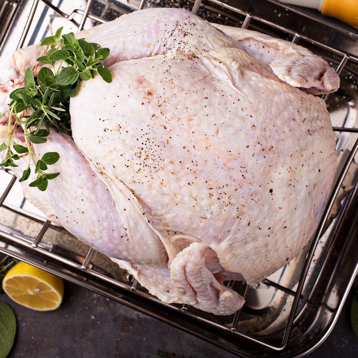 Cooking Thanksgiving or Christmas turkey in a roasting pan with lemons and herbs overhead view; Shutterstock ID 737627689; Job (TFH, TOH, RD, BNB, CWM, CM): TOH