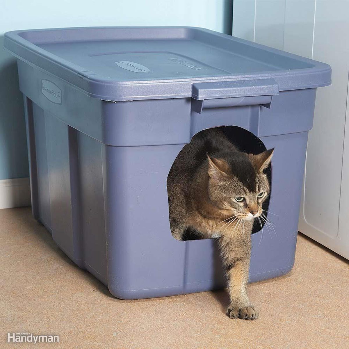Kitty coming out of a tub turned into a litterbox