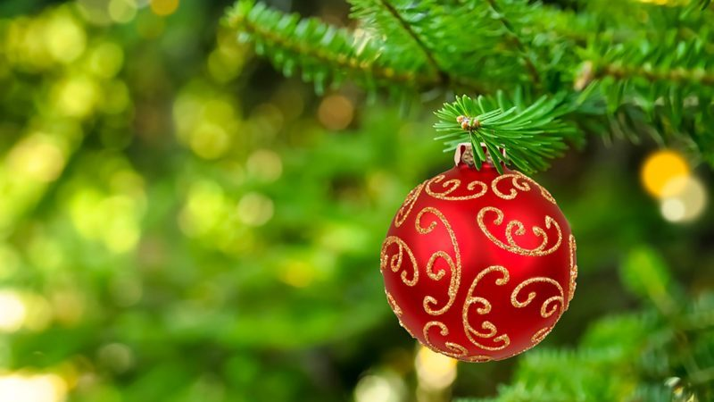 Christmas Red.The Real Reason Why Christmas Colors Are Green And Red