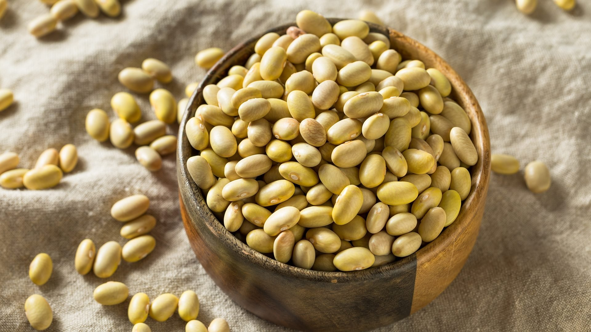 Dry Organic Yellow Mayocoba Beans