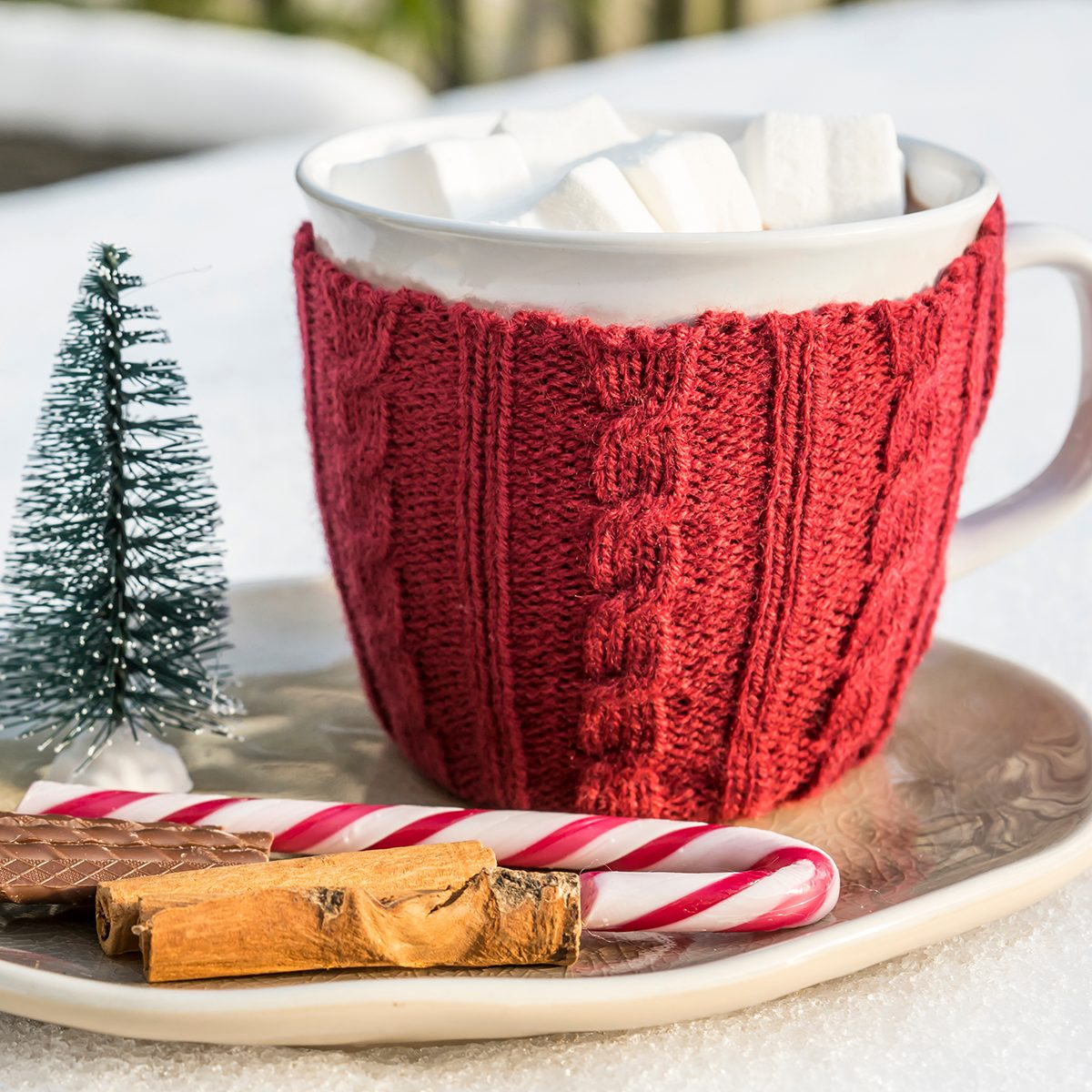 mug hot chocolate, marshmallow, on plate with cinnamon, candy, mini Christmas tree on table with snow