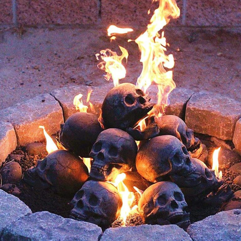 myard-skull-log