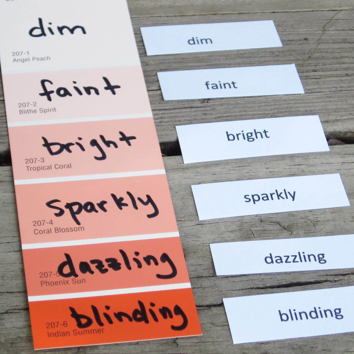 Paint Sample Vocabulary Flashcards