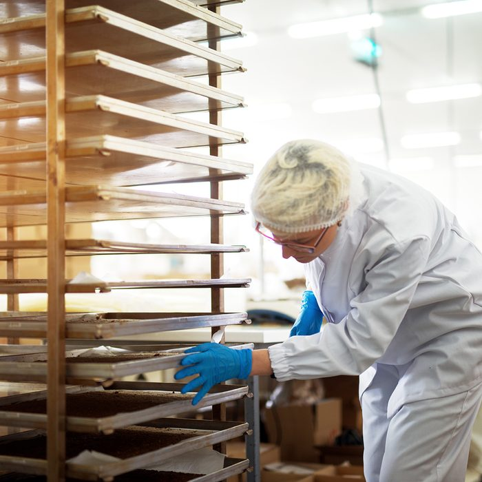 Young female hard working bakery employee in sterile cloths pushing rack with tinplates filled with freshly baked cookies.