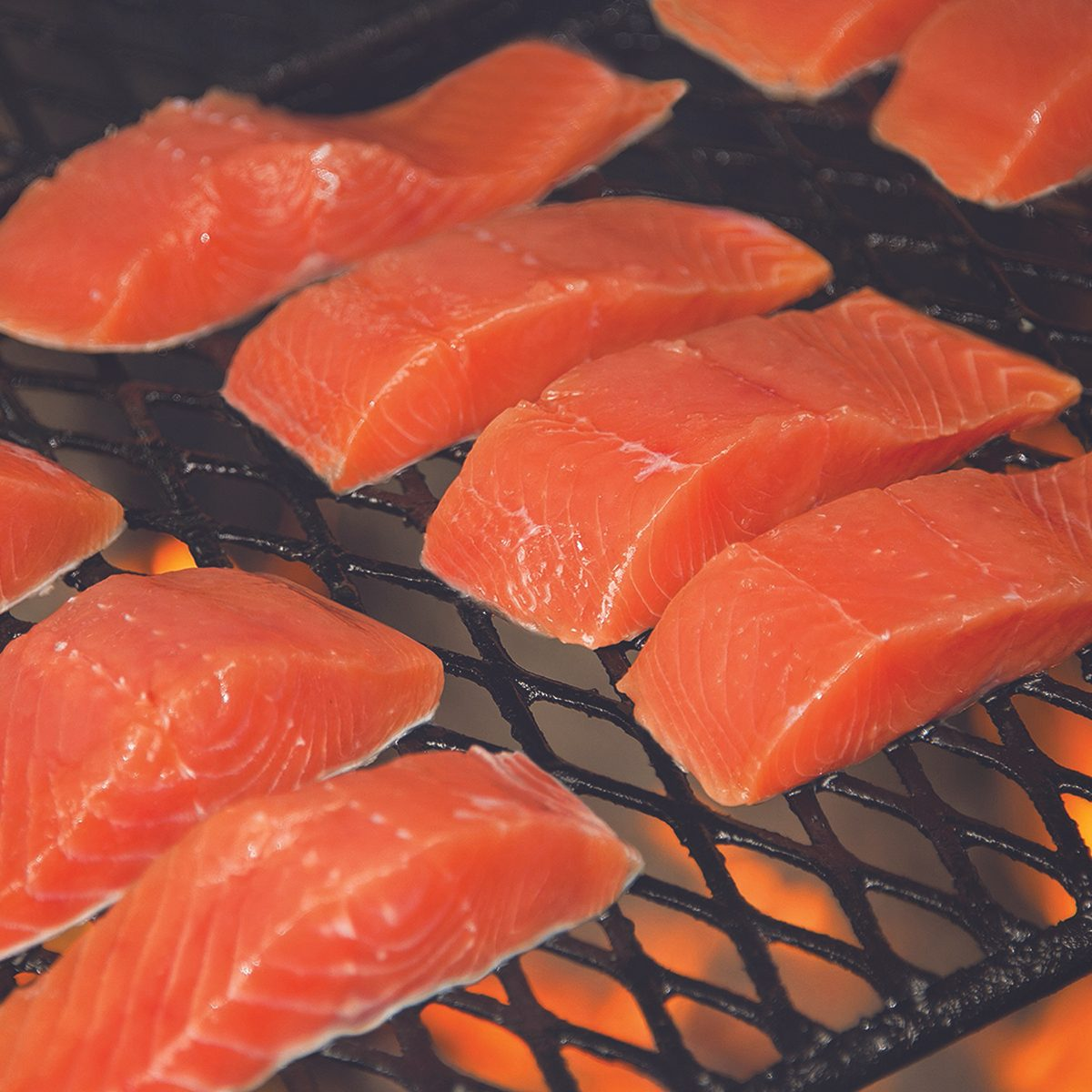 Alaska: Gold Creek Salmon Bake, Juneau