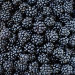 Hepatitis A Outbreak Potentially Linked to Blackberries Sold in 11 States