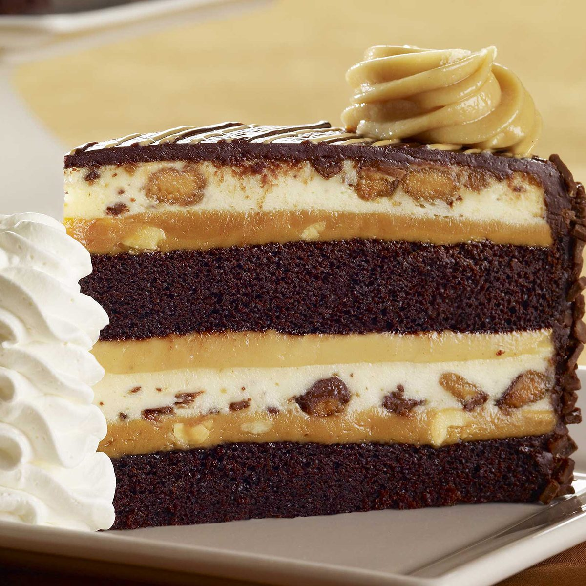 Peanutbutter chocolate cheesecake