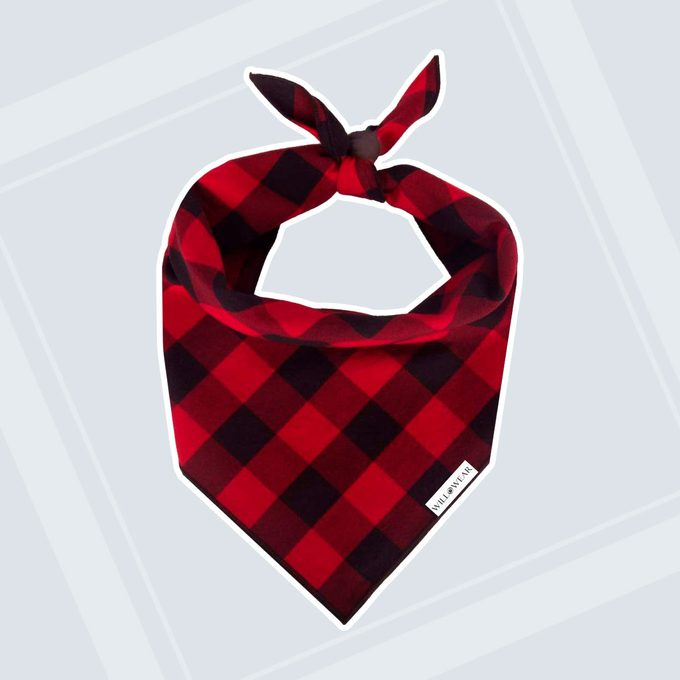 Gifts for dogs pet bandana