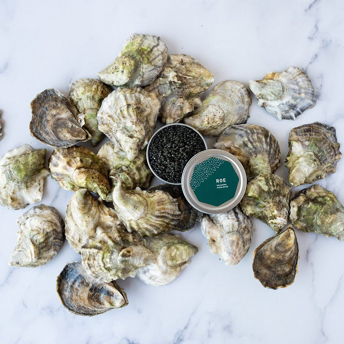 Island Creek Oysters Paddlefish Roe and 2 Dozen Oysters