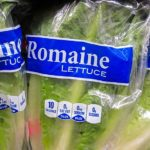 Romaine Lettuce Recalled Due to E. Coli Outbreak in 23 States