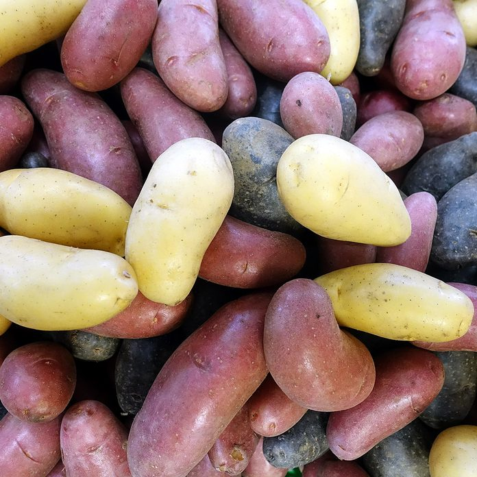 Mixed colour (yellow, purple and dark purple) of fingerling potatoes, small, stubby, finger-shaped type of potato which may be any heritage potato cultivars.; Shutterstock ID 1224134914; Job (TFH, TOH, RD, BNB, CWM, CM): Taste of Home