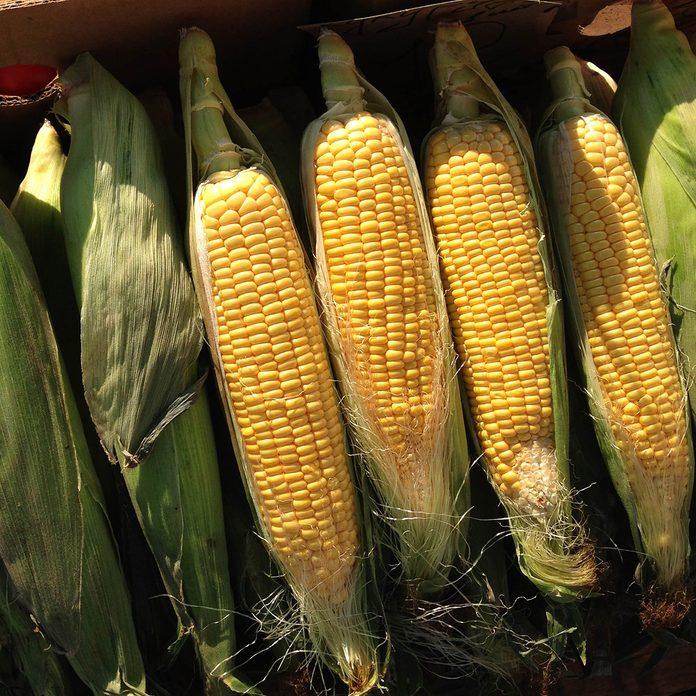 Macro Photo food vegetable sweet raw ear corn. Texture background of fresh yellow corns. Image vegetable product big sweet corns maize; Shutterstock ID 1459975826; Job (TFH, TOH, RD, BNB, CWM, CM): Taste of Home
