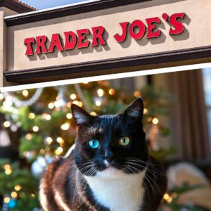 Trader Joe's Is Selling an Advent Calendar for Cats This Year