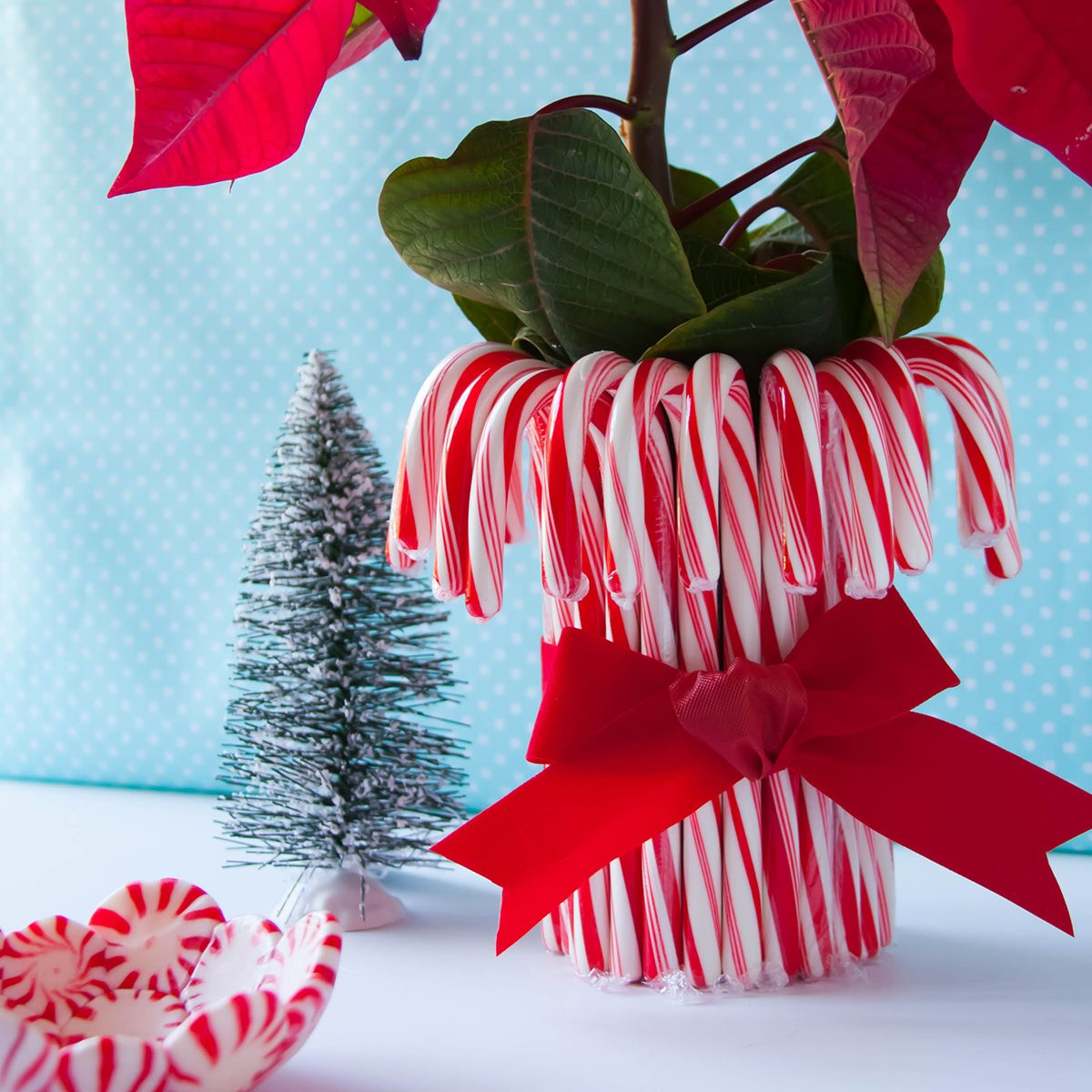 Christmas crafts using candy canes and mints