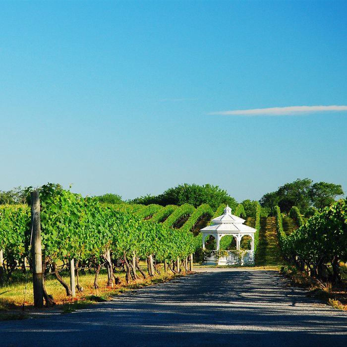 A gazebo is tucked into a vineyard in Cutchogue, New York, one of the many vineyards on the North Fork of Long Island