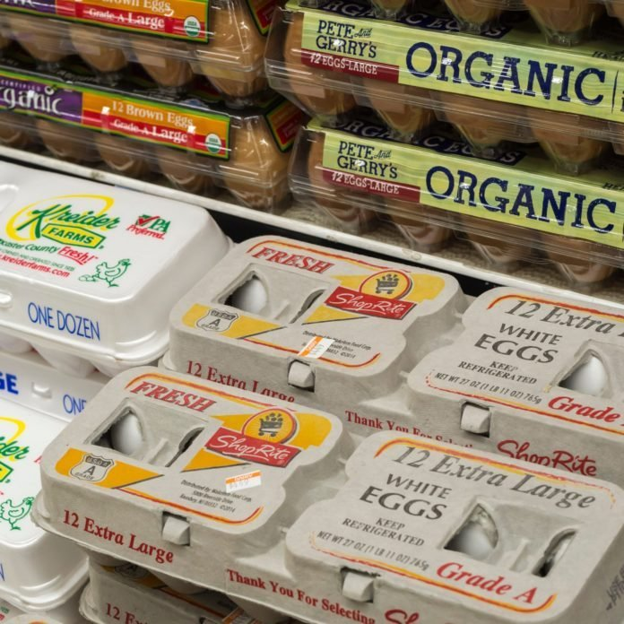 Cage-Free vs. Free-Range Eggs: What's the Difference?