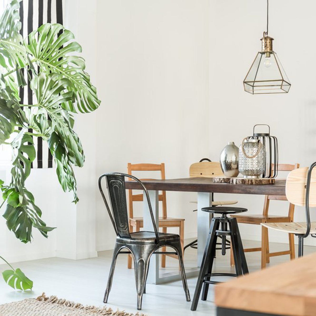 Kitchen with plants and wooden chairs