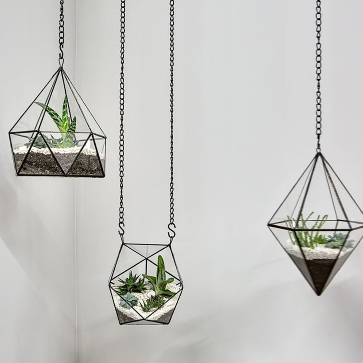 Hanging glass planters