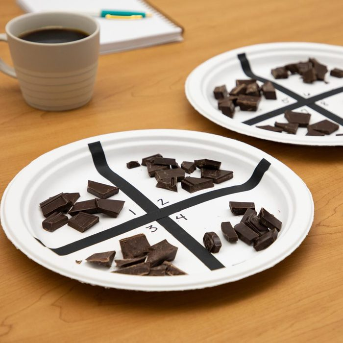 two plates marked into quadrants with small pieces of dark chocolate in each one