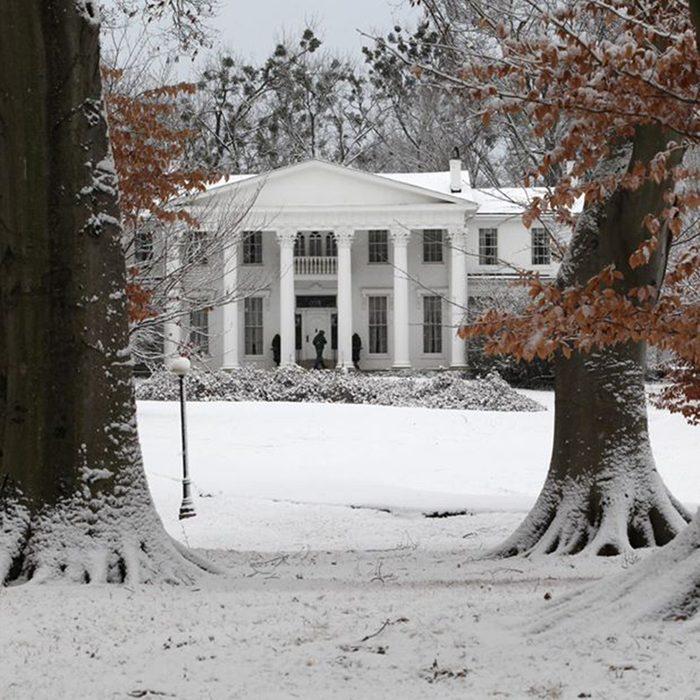 Whitehall House & Gardens