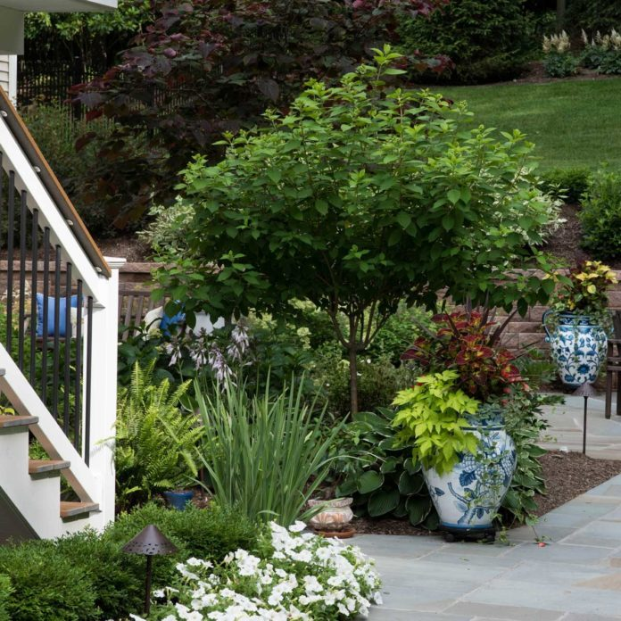 Landscaping Design Trends of 2020